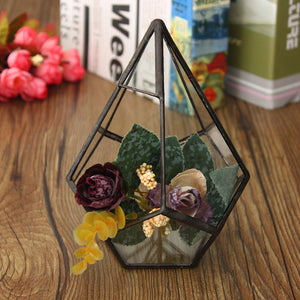 Succulent Plant Triangle Greenhouse Glass Terrarium DIY Micro Landscape Glass Bottle