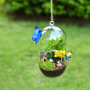 Micro Landscape Bottle Glass Vase Flowers Plants Hanging Garden