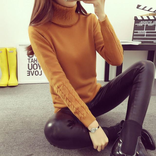Women Sweaters - Turtleneck Fashion Knitted Pullover - 5 Colors - Flickdeal.co.nz