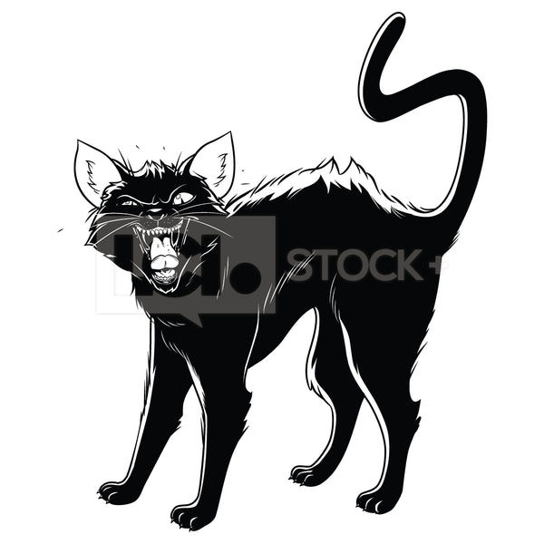 Black Cat Hissing Vector Clipart