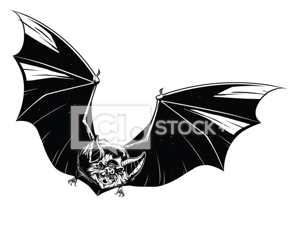 Vampire Bat Vector Clipart