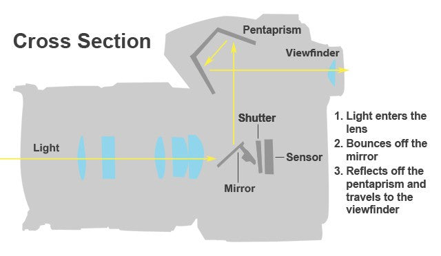 Mirrorless - a large sensor in a small body