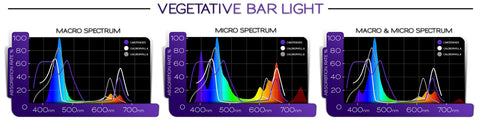 vegetative bar light