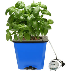 Flo-n-Gro Big Momma Bubbler Bucket - DWC Hydroponic System - Rogue Hydro - 1