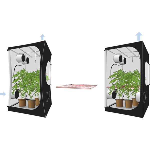 Secret Jardin Dark Street 120w v3.0 DS120W 2x4x5.6 Grow Tent - 2x4 Grow Tent - Rogue Hydro - 6