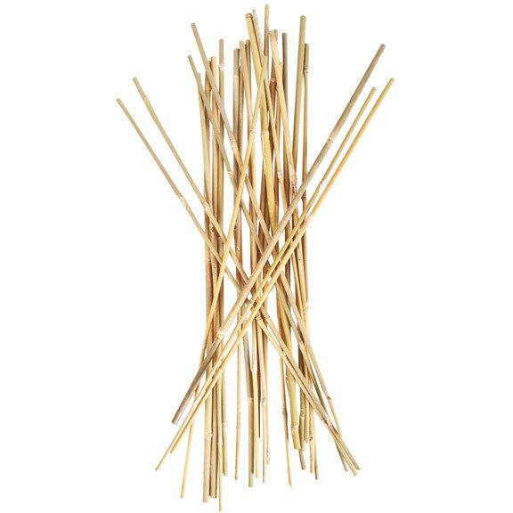 Smart Support 3' Bamboo Stakes, 25 Pack - Bamboo Stakes - Rogue Hydro