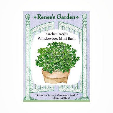 "Renee's Garden Basil, Mini ""Windowbox"" - Basil - Rogue Hydro - 1"