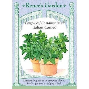 Renee's Garden Italian Cameo Large Leaf Container Basil - Basil - Rogue Hydro - 1
