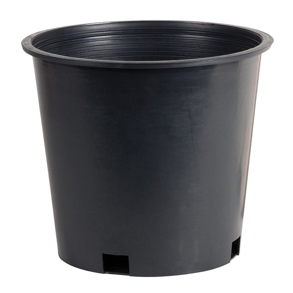 Mesh Bottom Round Pot, 8""