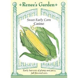 Renee's Garden Casino Sweet Early Corn - Corn - Rogue Hydro - 1