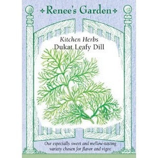 Renee's Garden Kitchen Herbs Dukat Leafy Dill - Dill - Rogue Hydro - 1