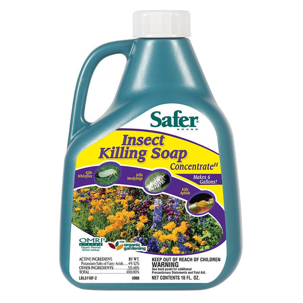 Safer Insect Killing Soap Concentrate, 16 Ounces - Disease and Pest Control - Rogue Hydro