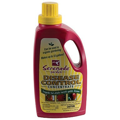 Serenade Garden Disease Control Concentrate, 1 Quart - Disease and Pest Control - Rogue Hydro