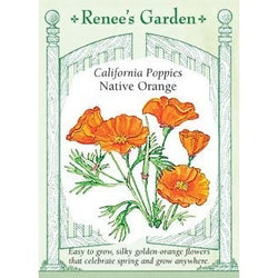 Renee's Garden California Poppies Native Orange - Flowers - Rogue Hydro - 1