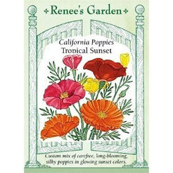 Renee's Garden California Poppies Tropical Sunset - Flowers - Rogue Hydro - 1