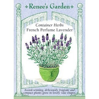 Renee's Garden Container Herbs French Perfume Lavender - Flowers - Rogue Hydro - 1