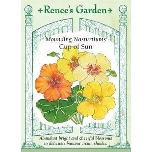 Renee's Garden Mounding Nasturtiums Cup of Sun - Flowers - Rogue Hydro - 1