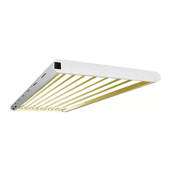 Pioneer 4' x 8 Tube T5 Fixture with Grow Tubes - Fluorescent Grow Light - Rogue Hydro