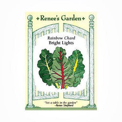 Renee's Garden Chard-Rainbow Bright Lights - Greens - Rogue Hydro - 1