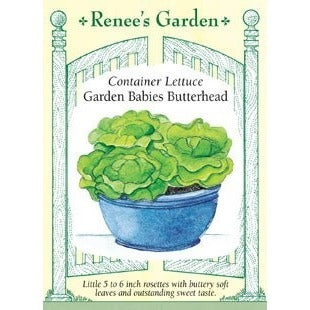 Renee's Garden Container Lettuce Garden Babies Butterhead - Greens - Rogue Hydro - 1