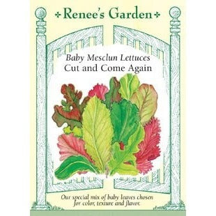 Renee's Garden Cut and Come Again Baby Mesclun Lettuces - Greens - Rogue Hydro - 1