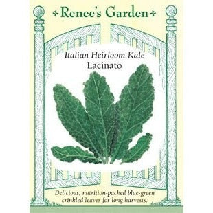 Renee's Garden Lacinato Italian Heirloom Kale - Greens - Rogue Hydro - 1