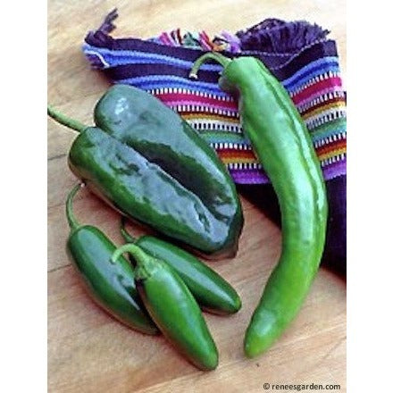 Renee's Garden Peppers - Southwestern Chile Trio - Peppers - Rogue Hydro - 2
