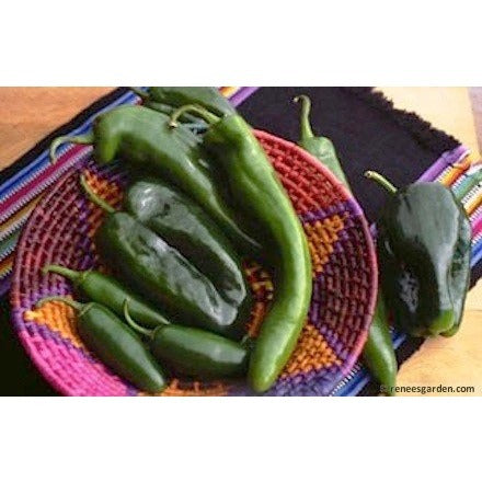 Renee's Garden Peppers - Southwestern Chile Trio - Peppers - Rogue Hydro - 3