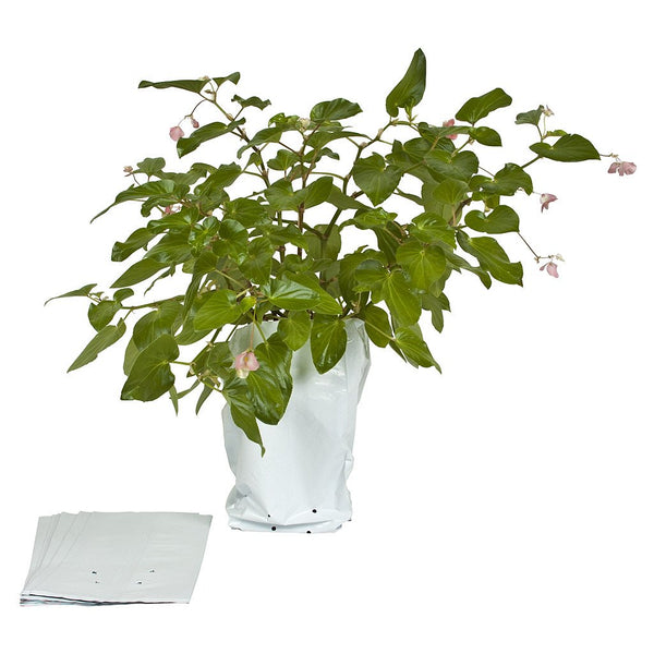 Sunleaves Grow Bags, 3 Gallon, 100 Pack - Poly Grow Bags - Rogue Hydro
