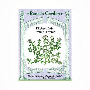 Renee's Garden Thyme, French Culinary - Thyme - Rogue Hydro - 1