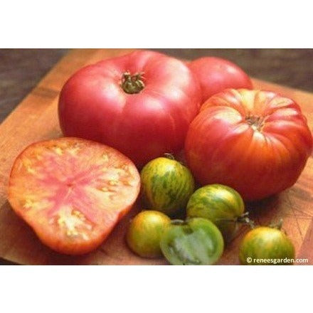 Renee's Garden Heirloom Tomatoes - Rainbow's End - Tomatoes - Rogue Hydro - 2