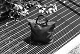 MIZU Cross Body Tote in Shadow Mesh look