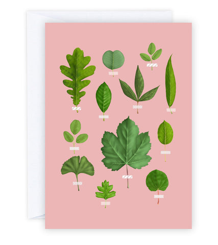 Leaf Collection Greeting Card