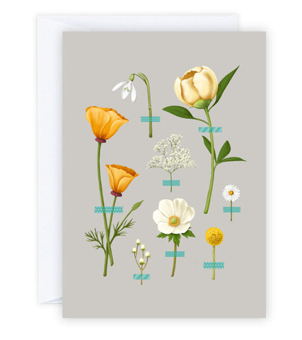 Wallflowers Greeting Card