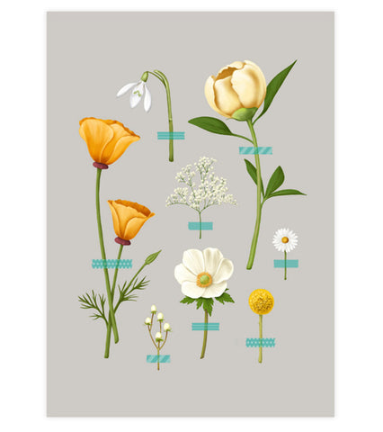 Wallflowers Art Print