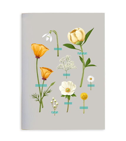 Wallflowers Notebook