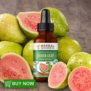 herbal goodness guava leaf extract 1oz