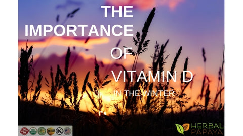 the importance of vitamin d in the winter