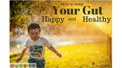 how to keep your gut happy and healthy