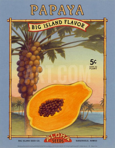 Retro Papaya Print