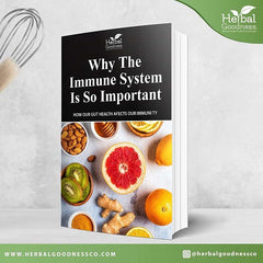 Why the immune system is so important