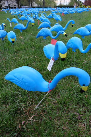 New way to purchase your own Teal Flamingos