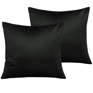 NTBAY Zippered Satin Square Throw Pillow Covers, 2 Pack Luxury Hidden Zipper Decorative Euro Pillowcases, 18 x 18 Inches