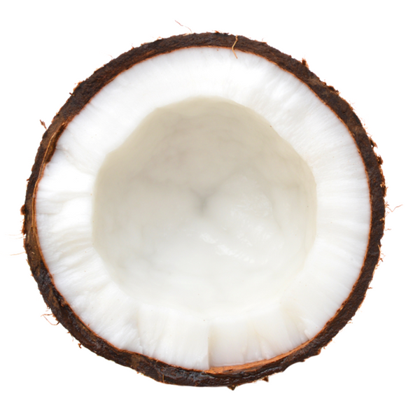 TFA Coconut (Extra) Concentrate