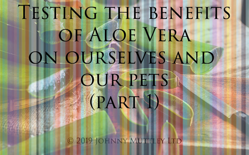 Testing the benefits of Aloe Vera part 1
