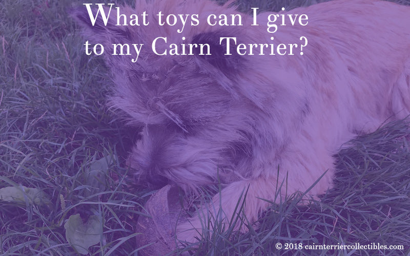 What toys can I give to my Cairn Terrier