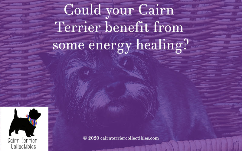 Energy healing blog - Cairn Terrier Collectibles