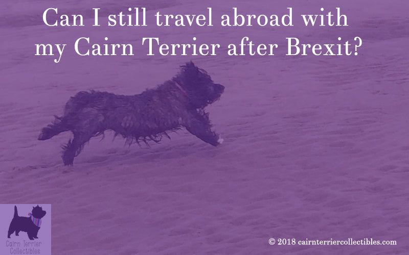 Can I still travel abroad with my Cairn Terrier after Brexit?
