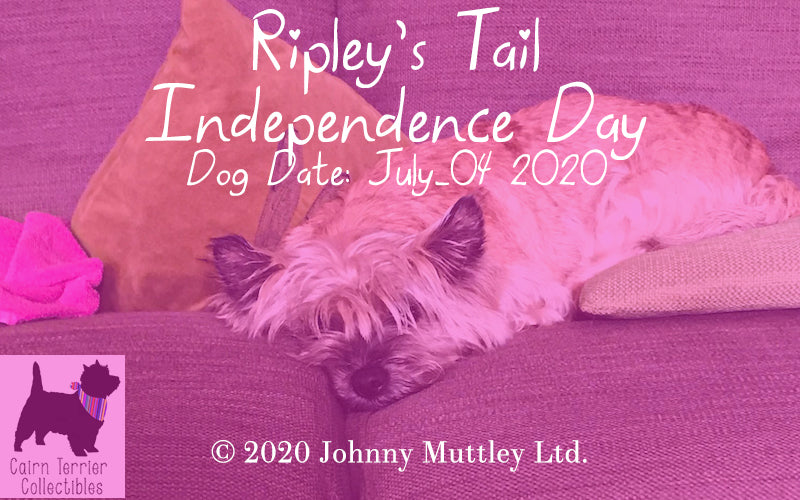 Ripley's Tail - Independence Day - July 2020