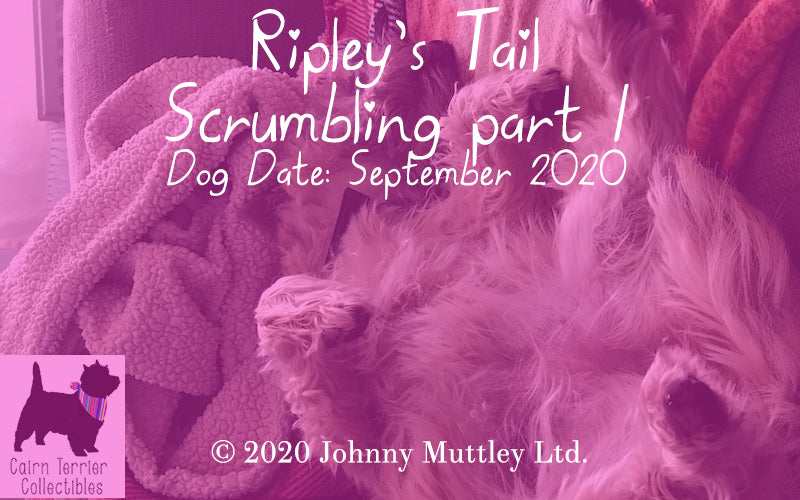 Ripley's Tail September 2020 - Scrumbling part 1